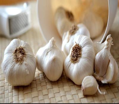 example garlic - Halal OEM Manufacturer