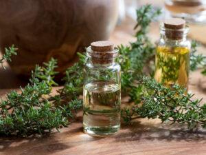 Thyme essential oil - Halal OEM Manufacturer